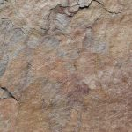 Pink Leather Sandstone