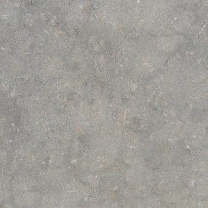 Sea Grass Limestone