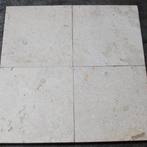 Shell Stone Shellstone